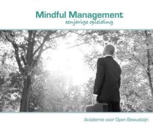Brochure Mindful Mangement