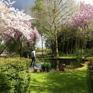 De prachtige tuin